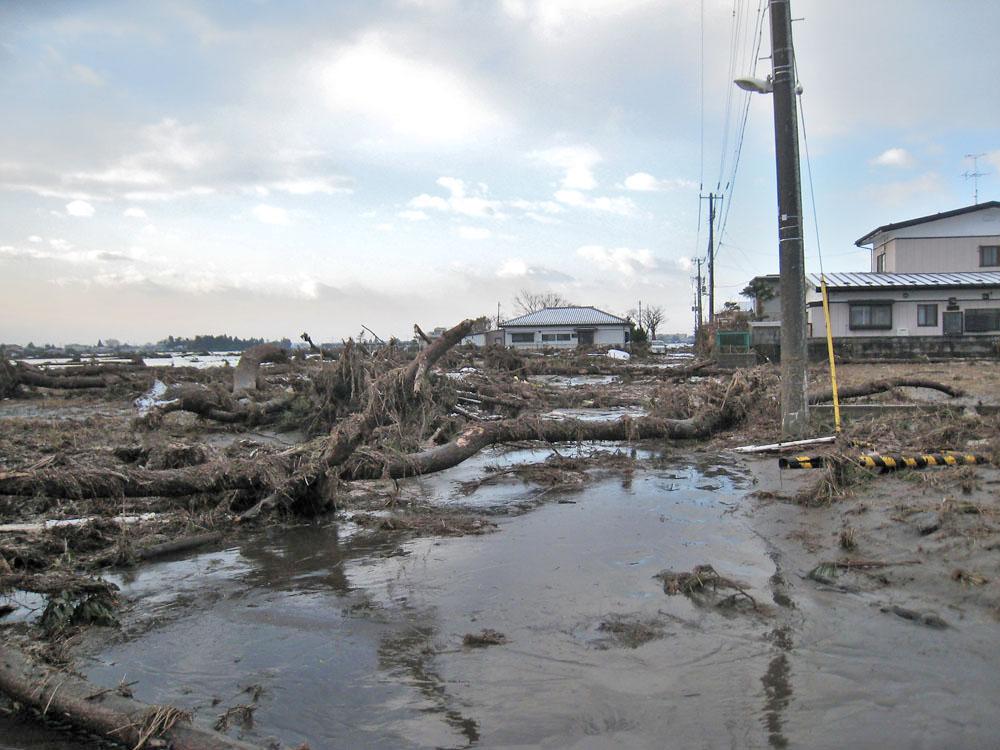 2011年3月12日仙台市若林区荒井