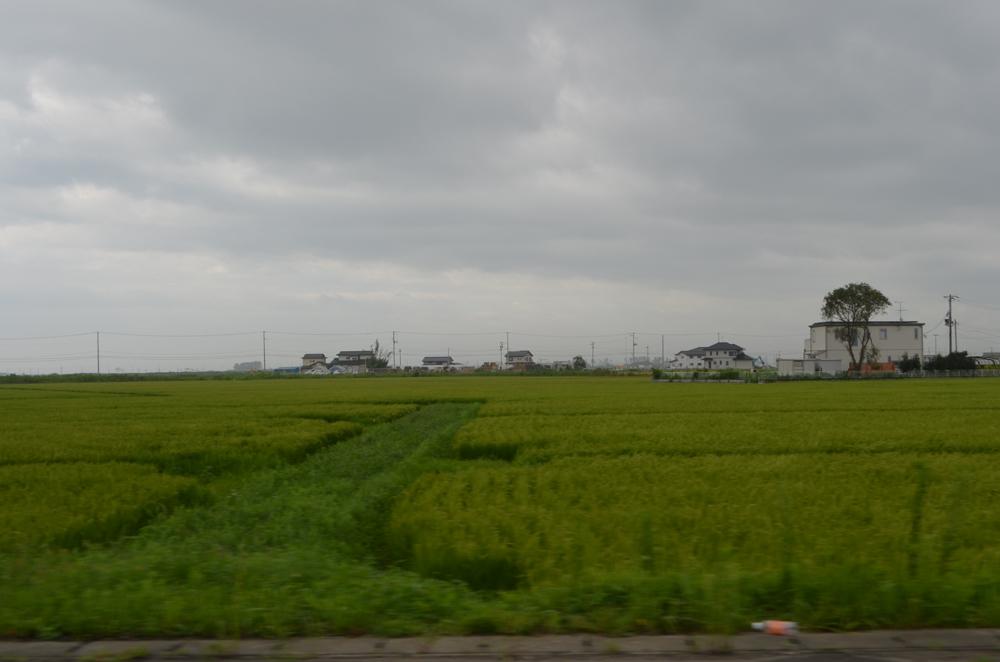 1.営農している田んぼ