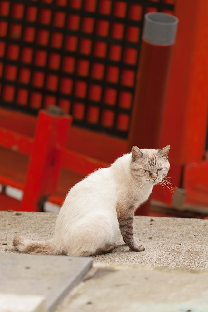 Hayama Shrine in Ogatsu