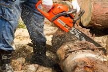 Okada Summer Festival: Preparations for Chainsaw Curving