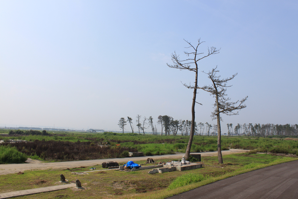 五柱神社の参道