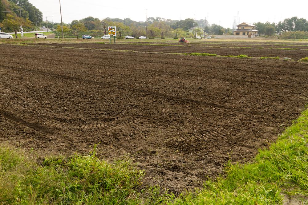 瓦礫が取り除かれた農地