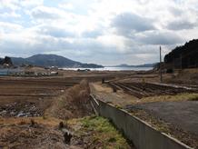陸前高田定点観測写真21〈米崎町樋の口 海〉