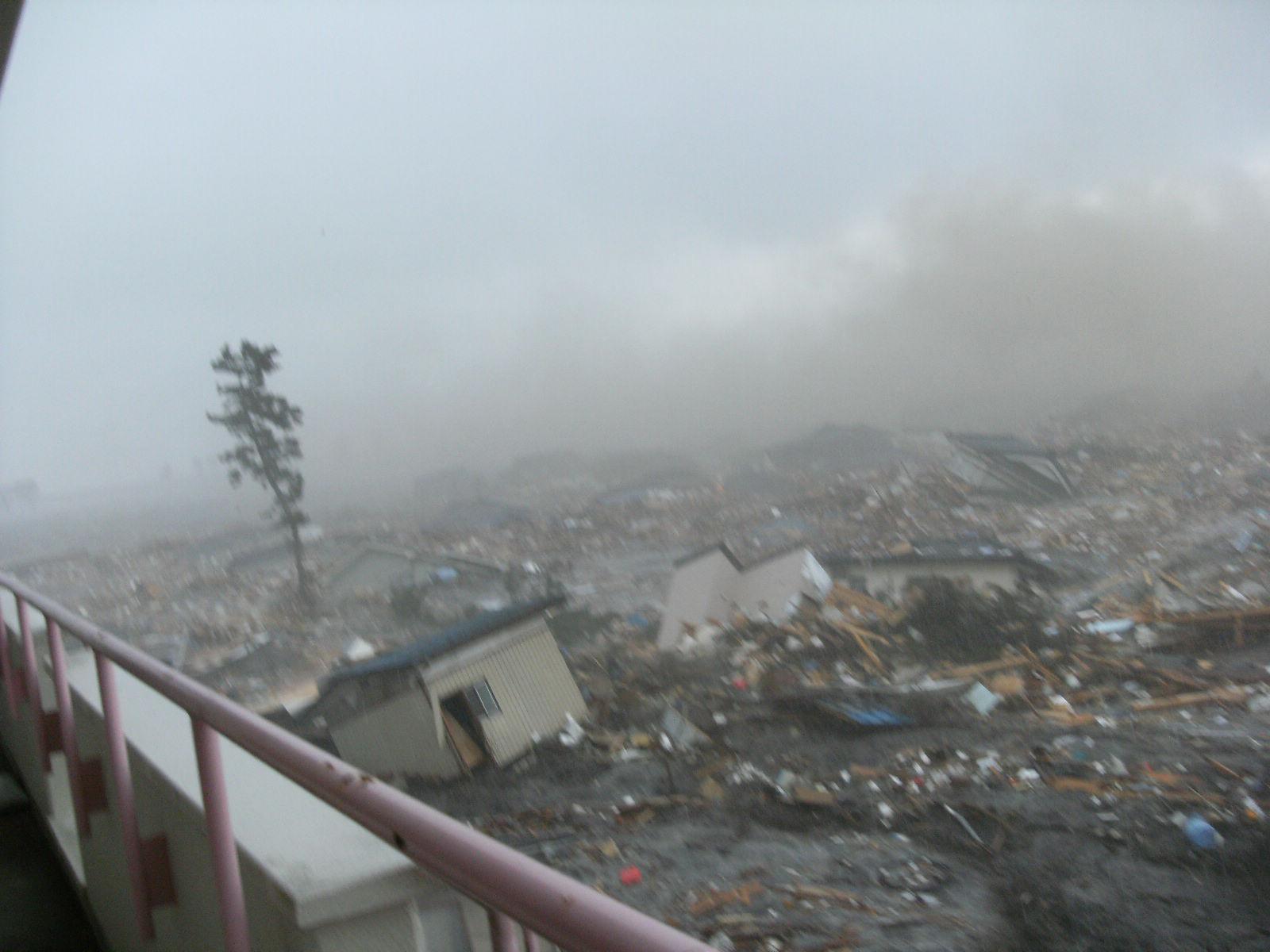 仙台市立荒浜小学校定点観測写真13〈校舎から東の海岸...