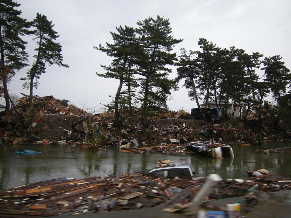 野蒜・東名運河(東松島市)