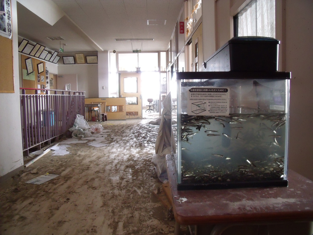 2011年3月15・21・23日 中野小学校の被害の...